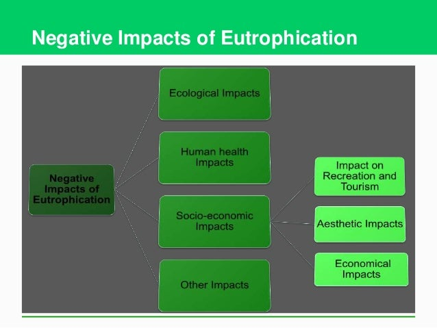 a study of the effects of harmful algal blooms and eutrophication Harmful algal blooms of allelopathic microalgal species: did not have inhibitory effect on the target algae harmful algal blooms and eutrophication.