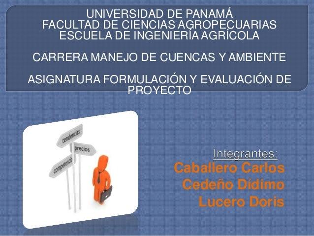 UNIVERSIDAD DE PANAMÁ  FACULTAD DE CIENCIAS AGROPECUARIAS  ESCUELA DE INGENIERÍA AGRÍCOLA  CARRERA MANEJO DE CUENCAS Y AMB...