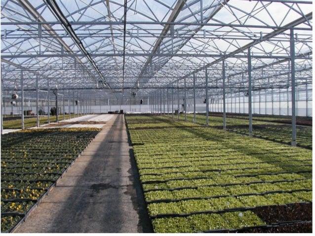 F-CLEAN® Greenhouse Film