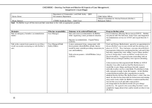 case management assignment containing case plan. Black Bedroom Furniture Sets. Home Design Ideas