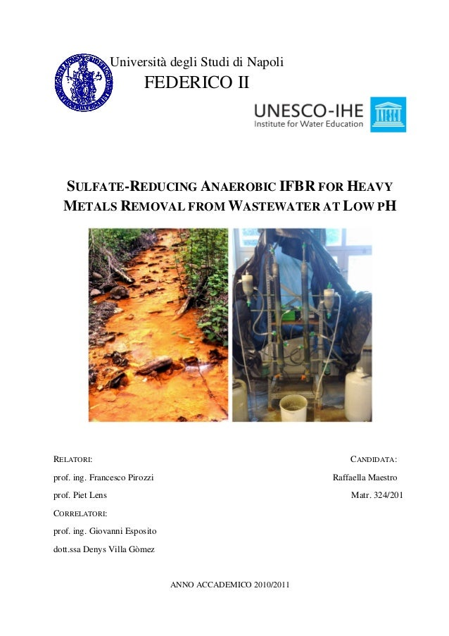 SULFATE-REDUCING ANAEROBIC IFBR FOR HEAVY METALS REMOVAL FROM WASTEWATER AT LOW PH RELATORI: CANDIDATA: prof. ing. Frances...