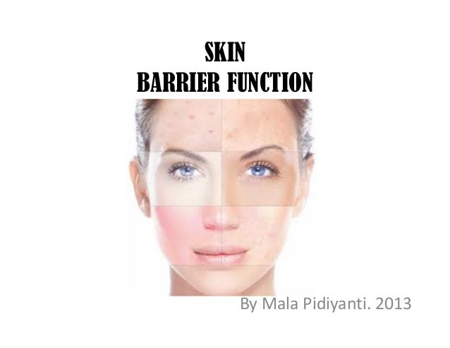 SKIN BARRIER FUNCTION By Mala Pidiyanti. 2013