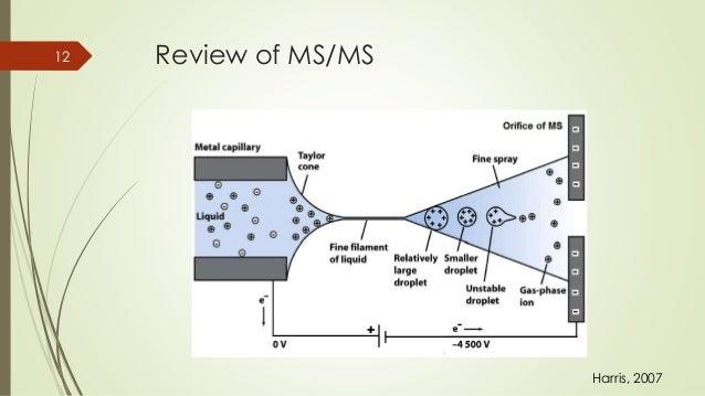 Cc ms drug test