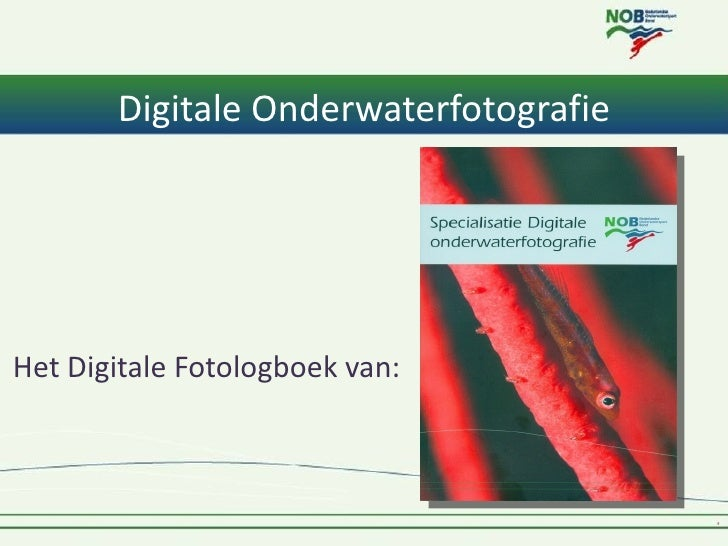 Digitale OnderwaterfotografieHet Digitale Fotologboek van: