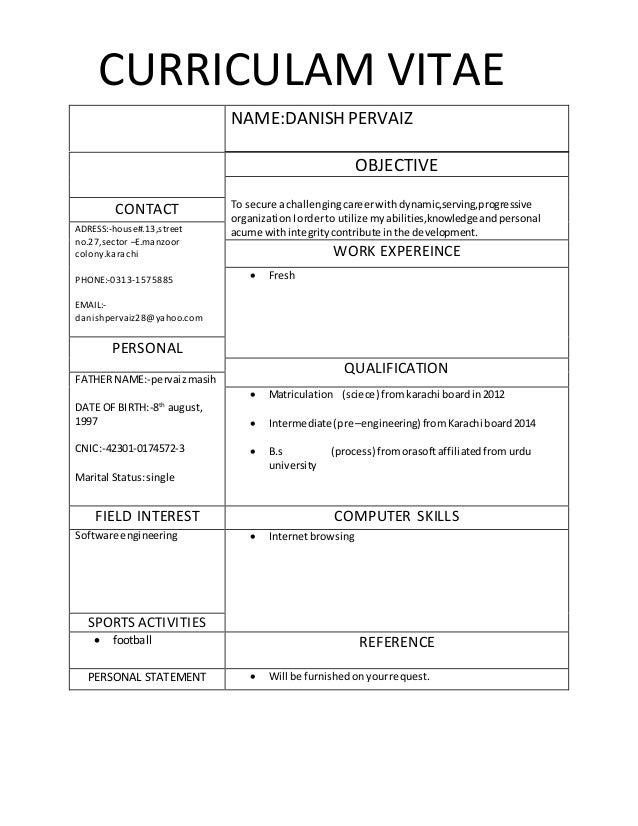 Professional CV style - Copy (1)