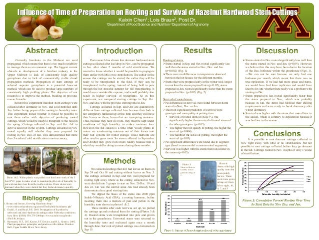 www.postersession.com Currently hazelnuts in the Midwest are seed propagated, which means that there is too much variabili...