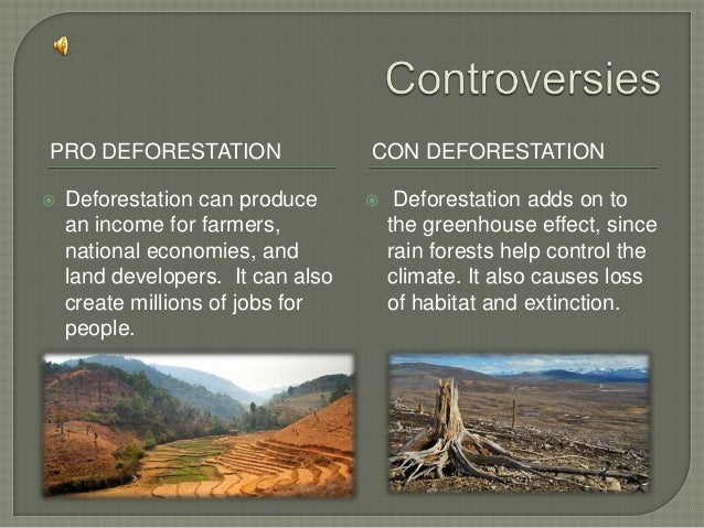Deforestation!