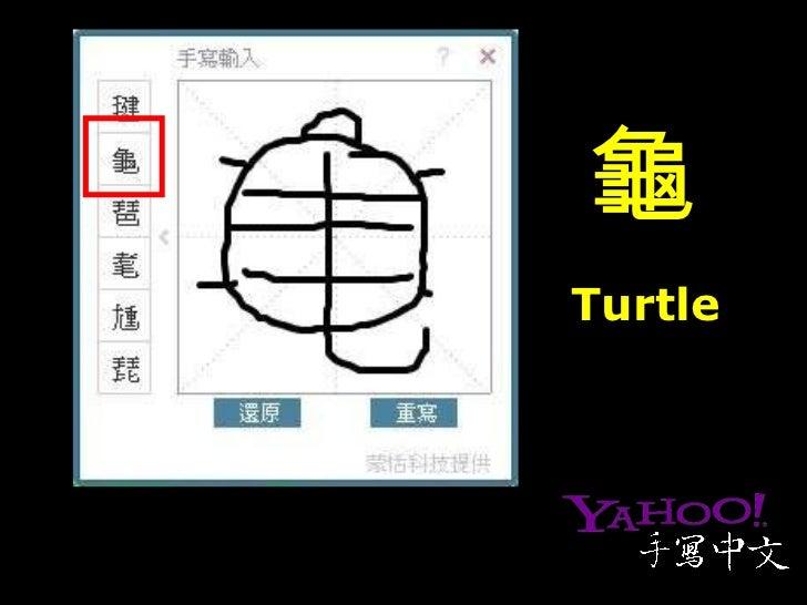 龜 Turtle