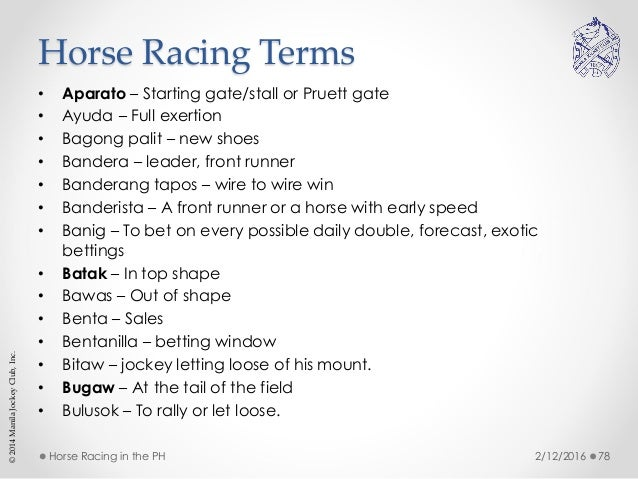 Horse racing gambling terms poker tracker 3 crack