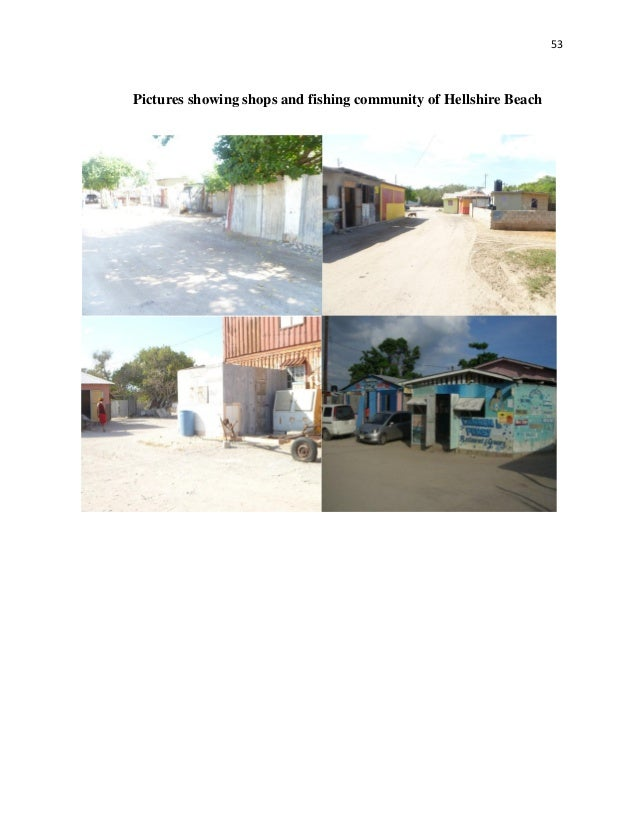 negative externalities essay international baccalaureate  page 1 zoom in
