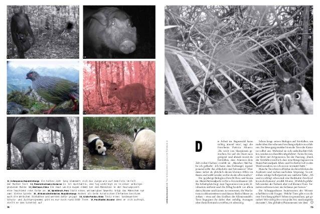 Greenpeace Magazin_TEAM_April 2014 Issue Slide 3