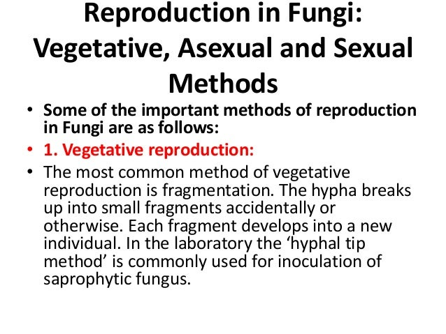 Asexual spores in fungi ppt