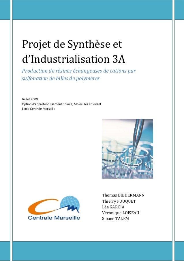 Rapport de projet – CMV – Juillet 2009 Page 1 Projet de Synthèse et d'Industrialisation 3A Production de résines échangeus...