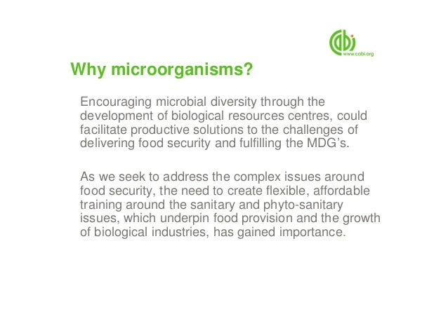 Why microorganisms? Encouraging microbial diversity through the development of biological resources centres, could facilit...