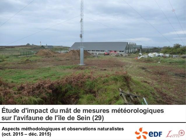 Étude d'impact du mât de mesures météorologiques sur l'avifaune de l'île de Sein (29) Aspects méthodologiques et observati...