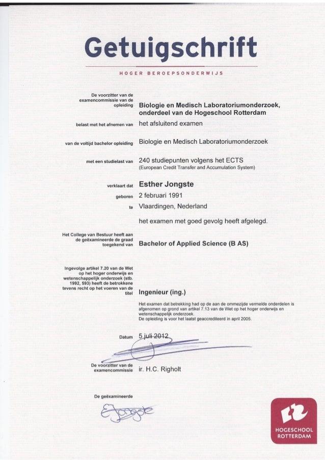 Bachelor Diploma (HLO Rotterdam)