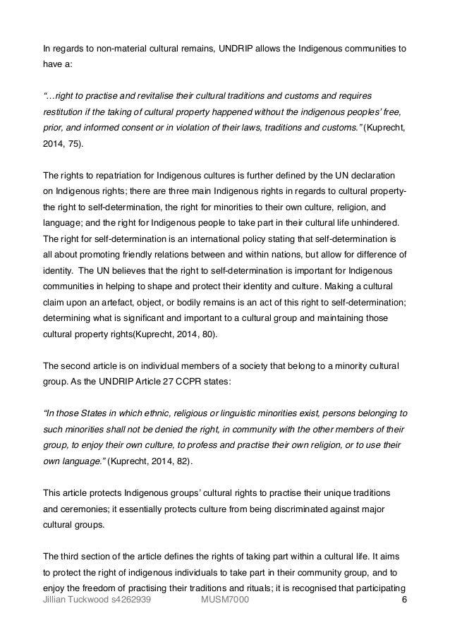 Non Material Culture Essay Paper - image 3