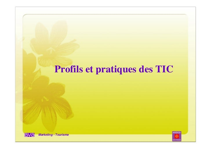 Profils et pratiques des TICMarketing - Tourisme