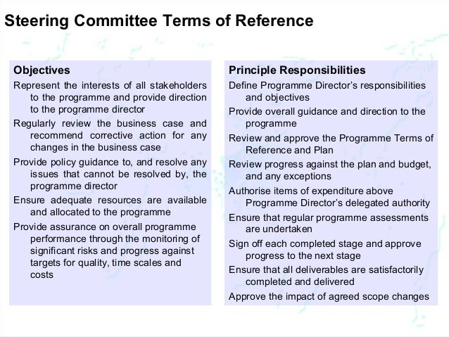 Terms of reference for business plan development and implementation