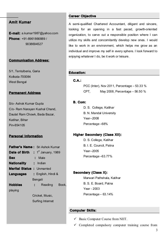 2 3 - Sample Resume Of Chartered Accountantindia