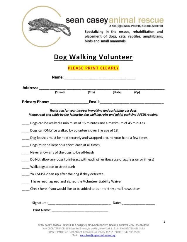 Dog Walking Volunteer York