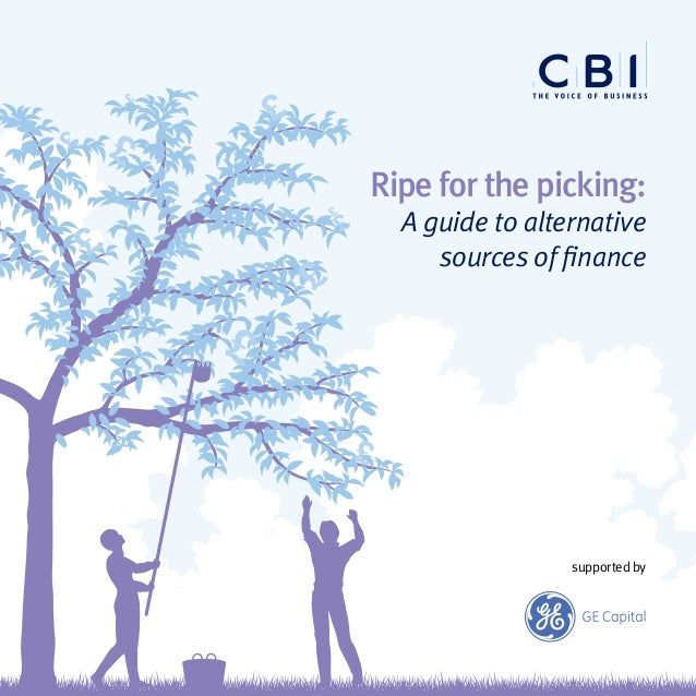 Ripe for the picking: A guide to alternative sources of finance supported by