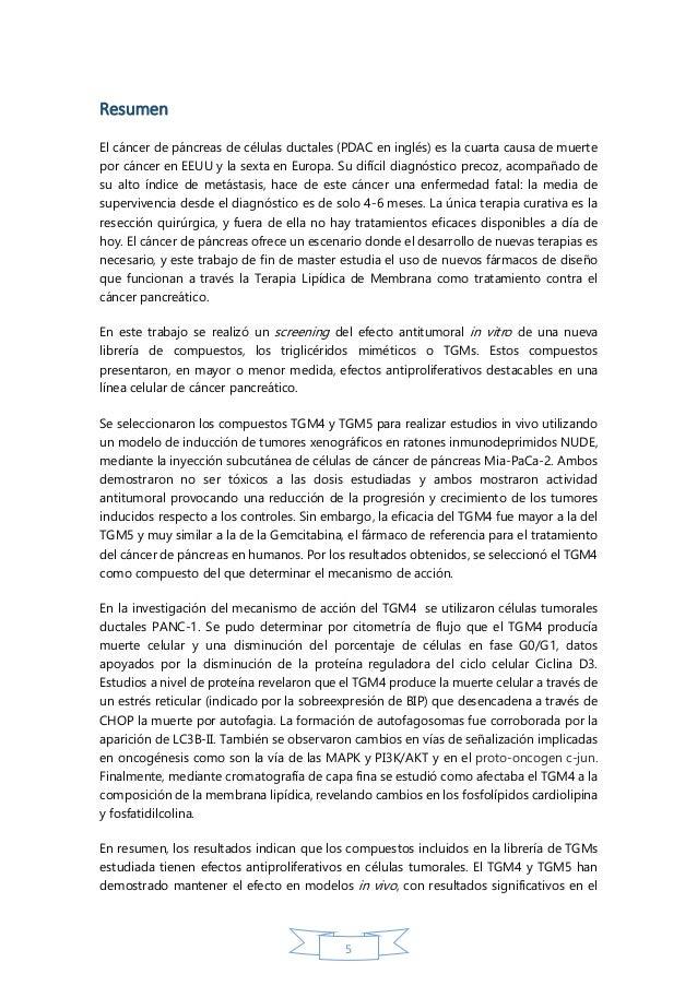concurso libreria thesis 2014