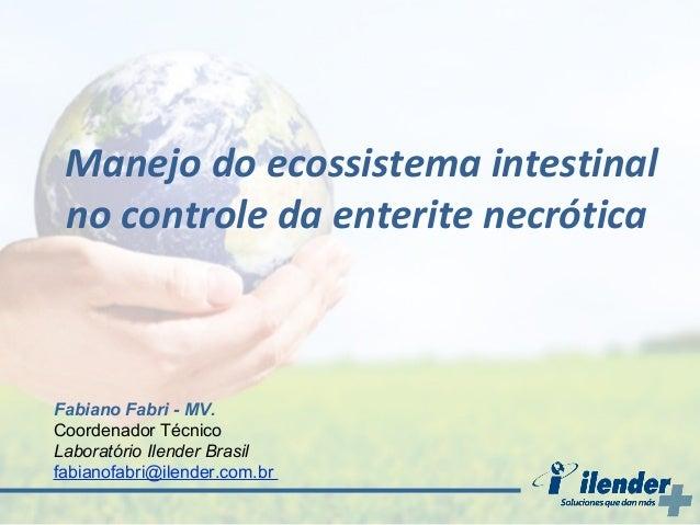 Manejo do ecossistema intestinal no controle da enterite necrótica  Fabiano Fabri - MV. Coordenador Técnico Laboratório Il...