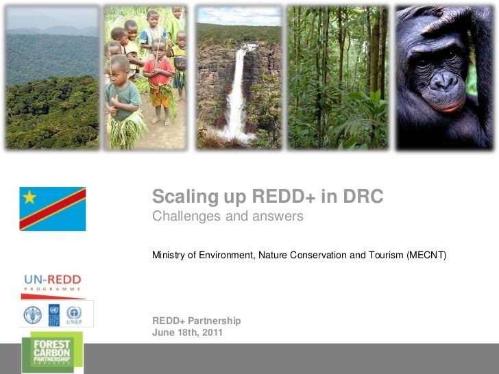 Scaling up REDD+ in DRC    Challenges and answers    Ministry of Environment, Nature Conservation and Tourism (MECNT)    R...