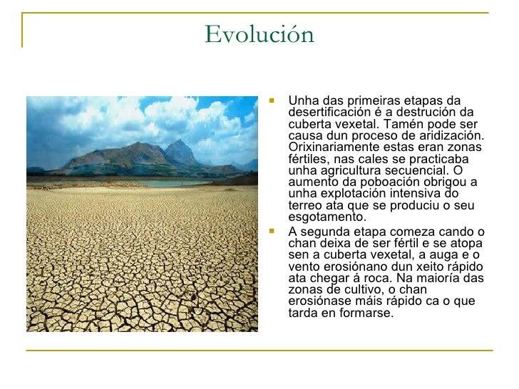 Evolución <ul><li>Unha das primeiras etapas da desertificación é a destrución da cuberta vexetal. Tamén pode ser causa dun...