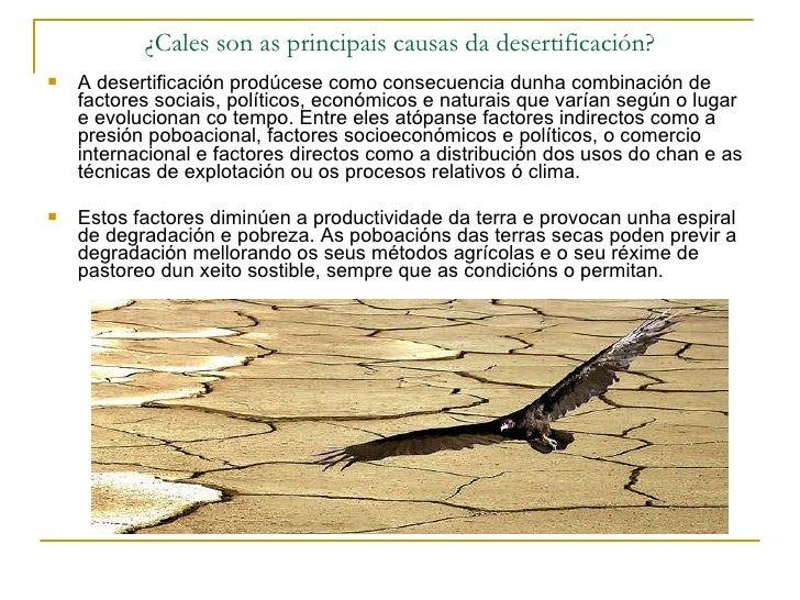 ¿Cales son as principais causas da desertificación? <ul><li>A desertificación prodúcese como consecuencia dunha combinació...