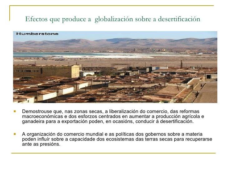Efectos que produce a  globalización sobre a desertificación   <ul><li>Demostrouse que, nas zonas secas, a liberalización ...