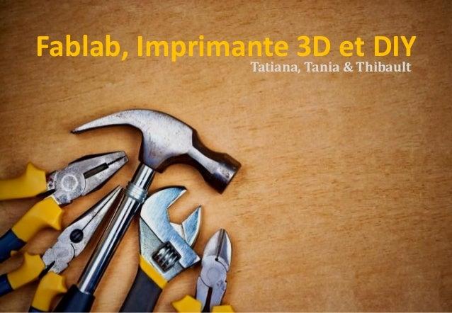 II) Le Do It Yourself à l'heure du Numérique Fablab, Imprimante 3D et DIYTatiana, Tania & Thibault