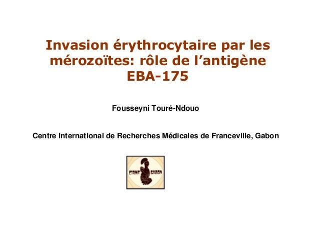 Invasion érythrocytaire par lesmérozoïtes: rôle de l'antigèneEBA-175Fousseyni Touré-NdouoCentre International de Recherche...