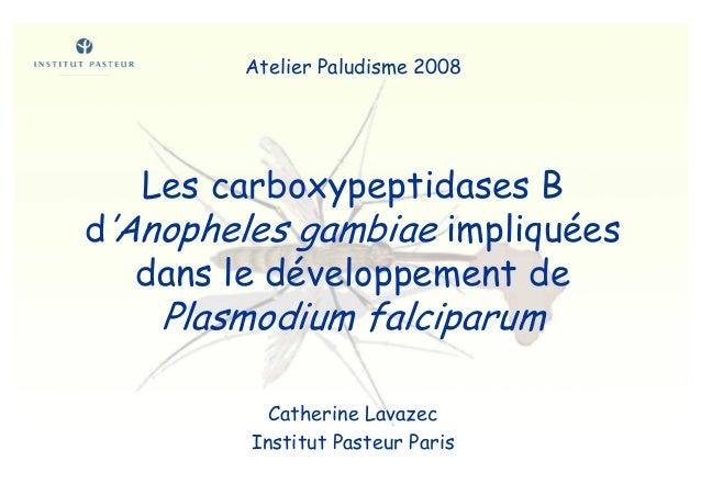 Les carboxypeptidases Bd'Anopheles gambiae impliquéesdans le développement dePlasmodium falciparumCatherine LavazecInstitu...