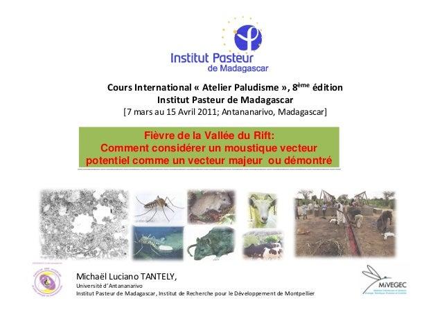 Cours International « Atelier Paludisme », 8ème édition                      Institut Pasteur de Madagascar               ...