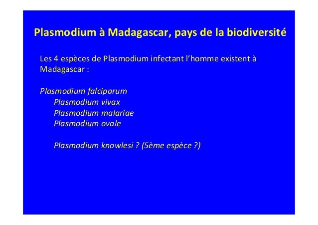 amoxicillin 875 mg high dosage