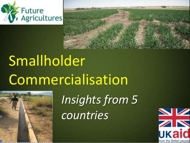 Smallholder Commercialisation Insights from 5 countries