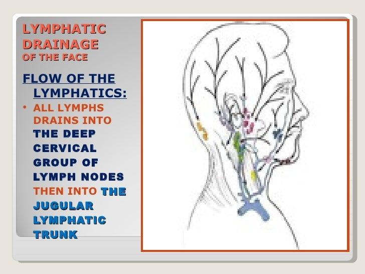 lymph drainage face