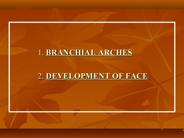 1. BRANCHIAL ARCHES 2. DEVELOPMENT OF FACE