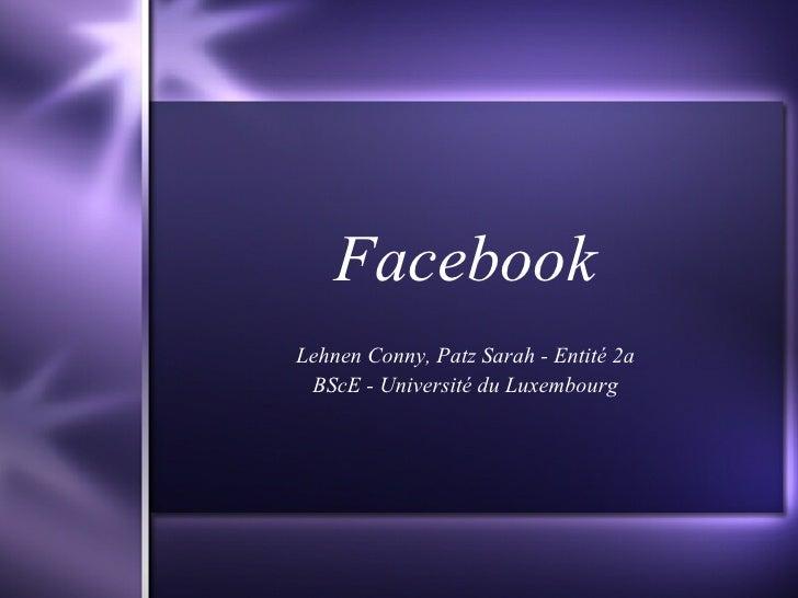 Facebook Lehnen Conny, Patz Sarah - Entité 2a BScE - Université du Luxembourg