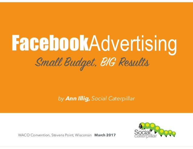 FacebookAdvertising Small Budget, BIG Results WACO Convention, Stevens Point, Wisconsin March 2017 by Ann Illig, Social Ca...