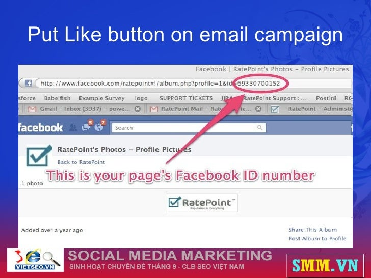 Put Like button on email campaign