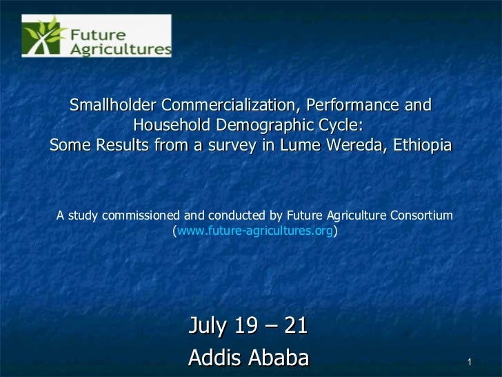 Smallholder Commercialization, Performance and Household Demographic Cycle:  Some Results from a survey in Lume Wereda, Et...