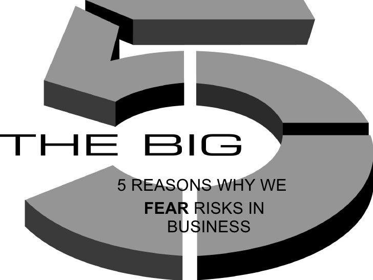 <ul><li>5 REASONS WHY WE </li></ul><ul><li>FEAR  RISKS IN BUSINESS </li></ul>