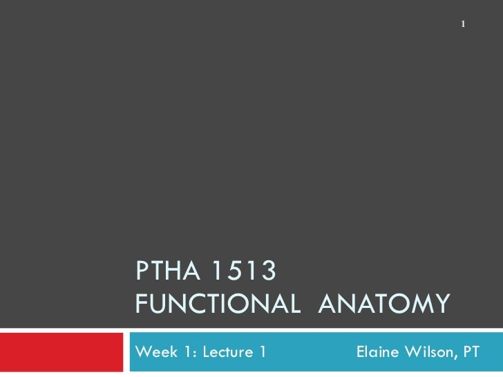 PTHA 1513 FUNCTIONAL  ANATOMY Week 1: Lecture 1    Elaine Wilson, PT