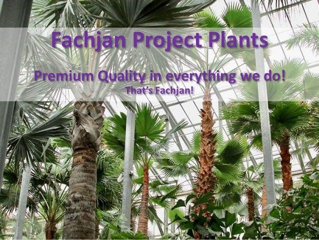 Fachjan Project Plants Premium Quality in everything we do! That's Fachjan!