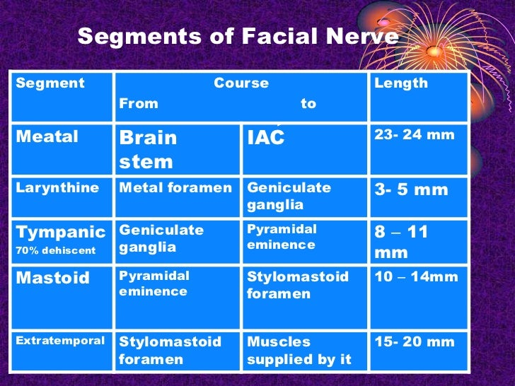 Facial Nerve Paralysis Ppt