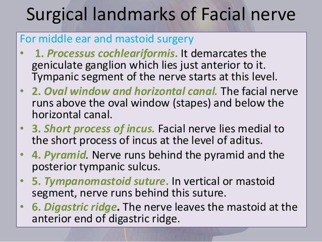 surgical landmarks of facial nerve pdf