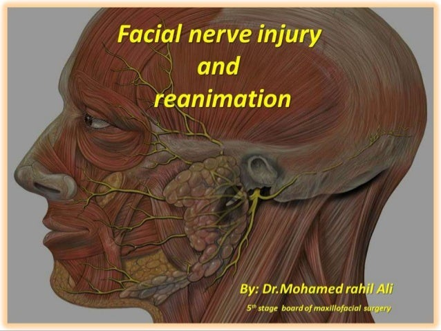 muscles paralysis stem for facial cells